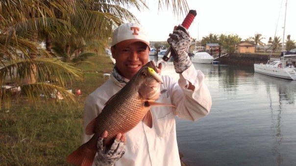 mangrove snapper cebu