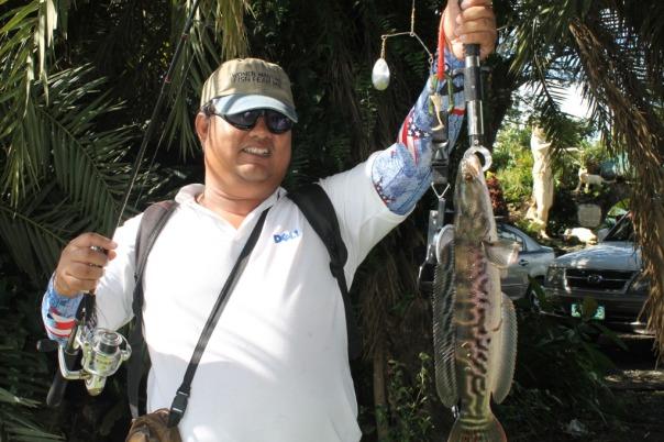 Giant Snakehead Laguna