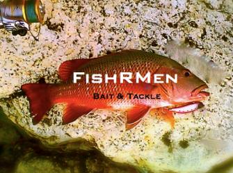fishrmen bait and tackle