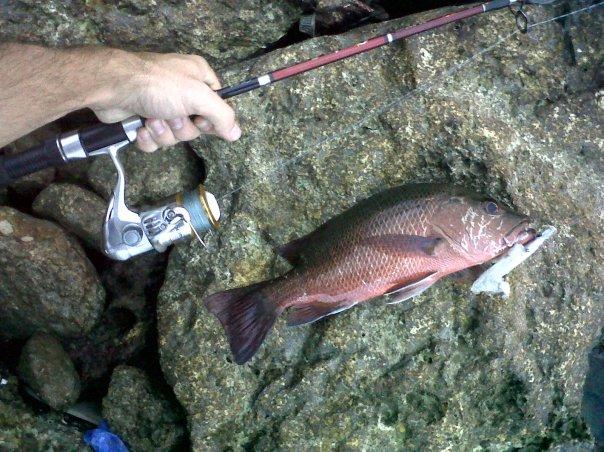 Fishing Spot Cebu Philippines