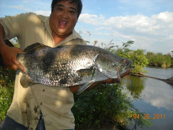 bacolod sport fishing