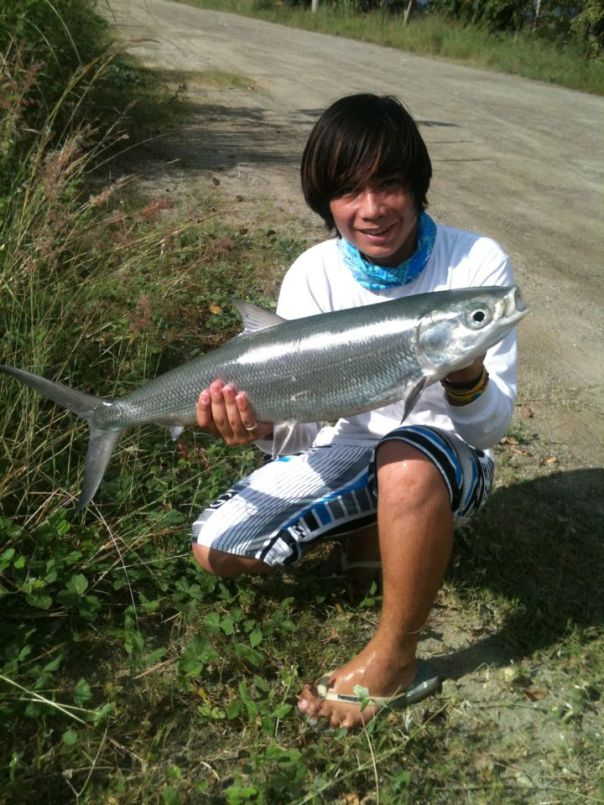 milkfish fishing philippines