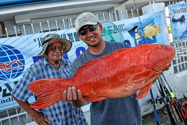 suno fish