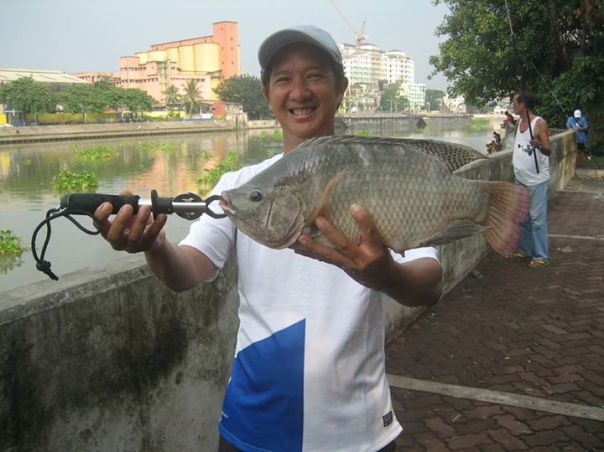 tilapia fishing
