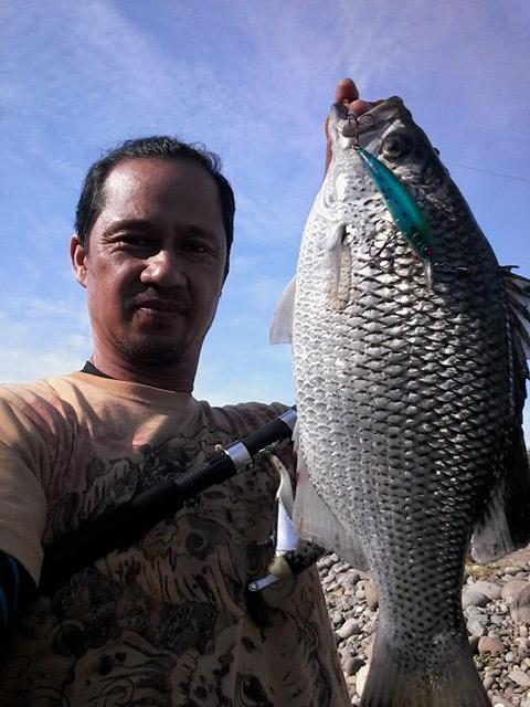 luigi-beja-2-1kg-flagtail